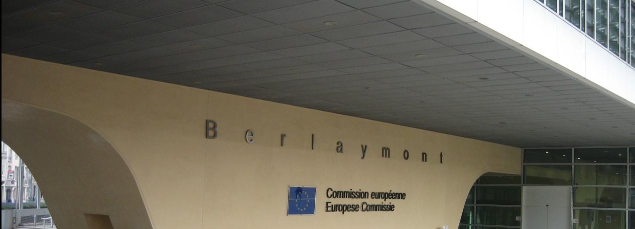 Leader in progetti europei dal 1991